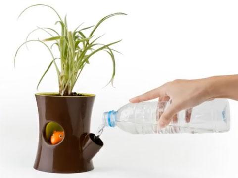 Полив растений в период отъезда